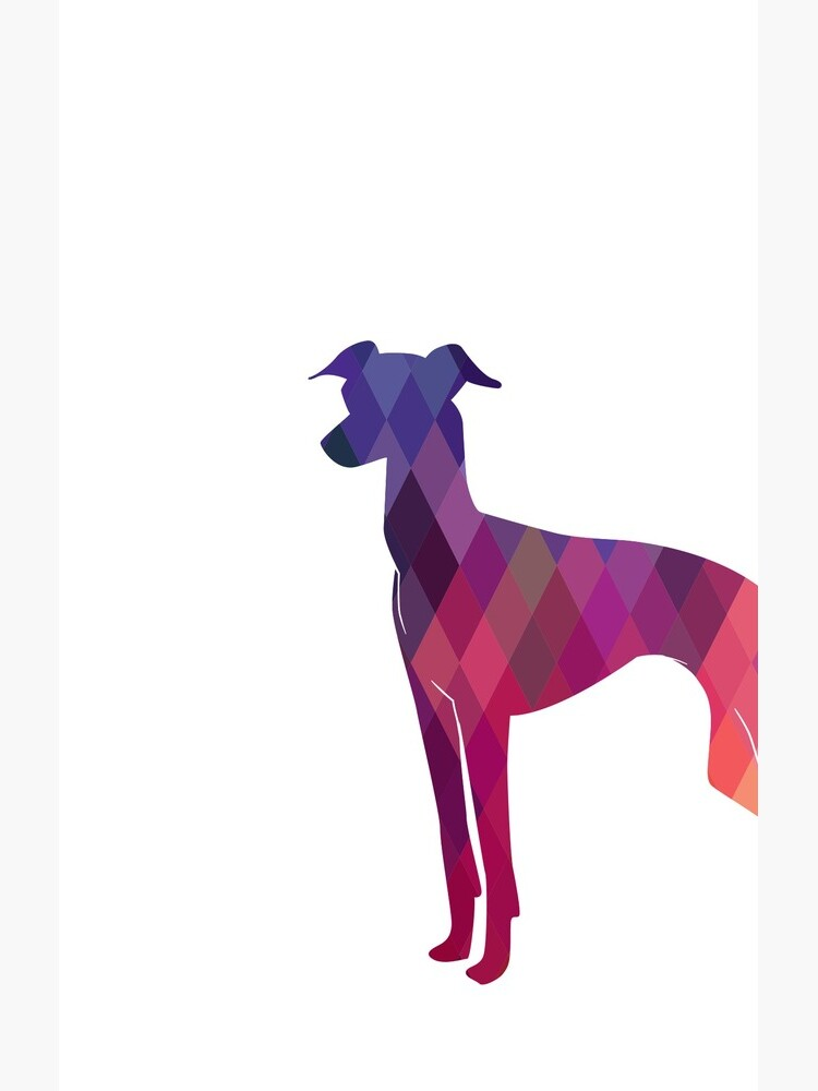 Italian Greyhound - Iggy - Geometric Pattern Silhouette Pink by TriPodDogDesign