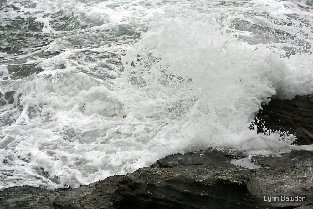 """""""Splash"""" by Lynn Bawden"""