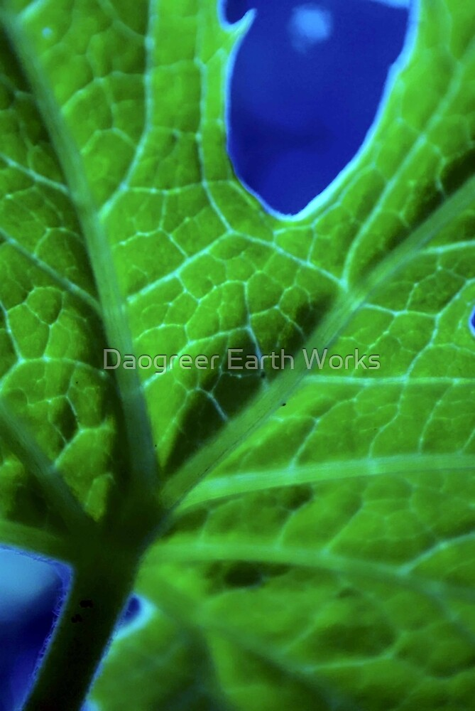 Loose Weave by Daogreer Earth Works