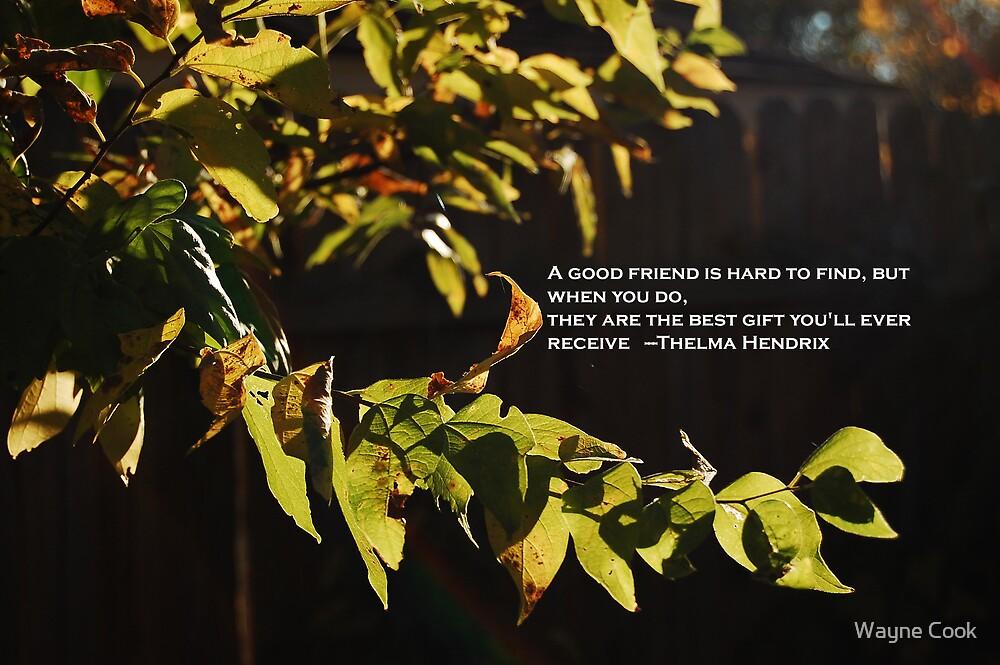 A Good Friend by Wayne Cook