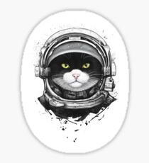 Cosmic Cat Sticker