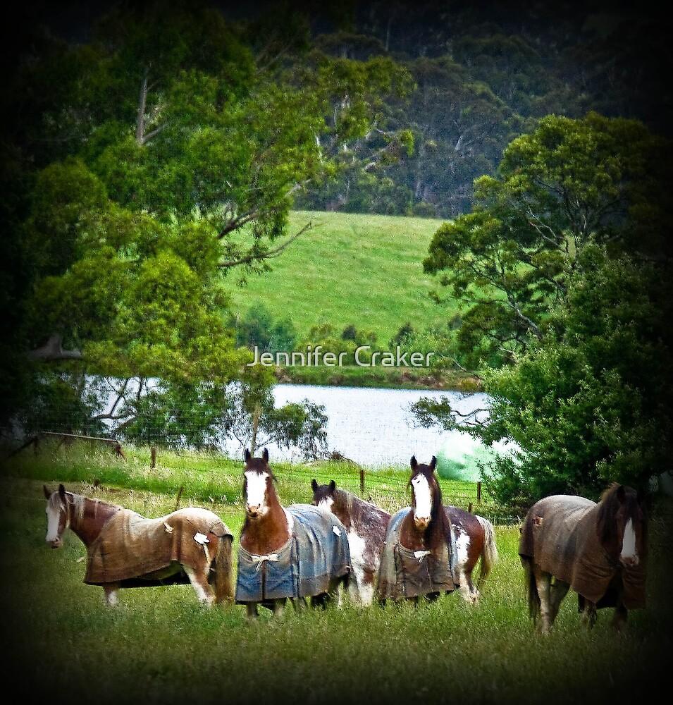 Draught Horses by Jennifer Craker