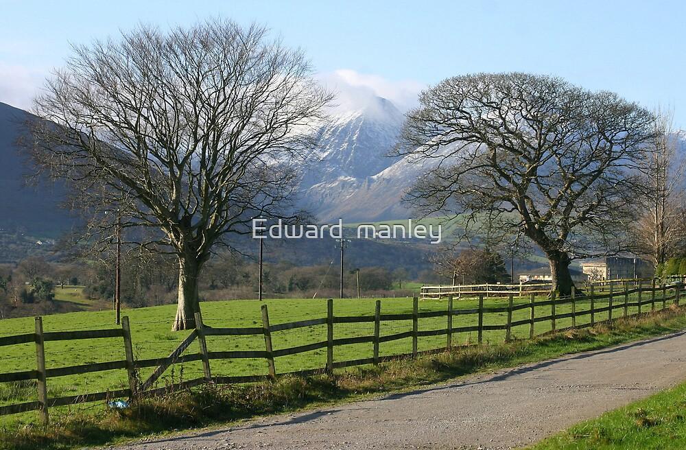 peaks high by Edward  manley