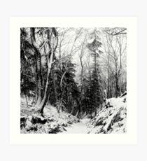 winter landscape in black and white Art Print