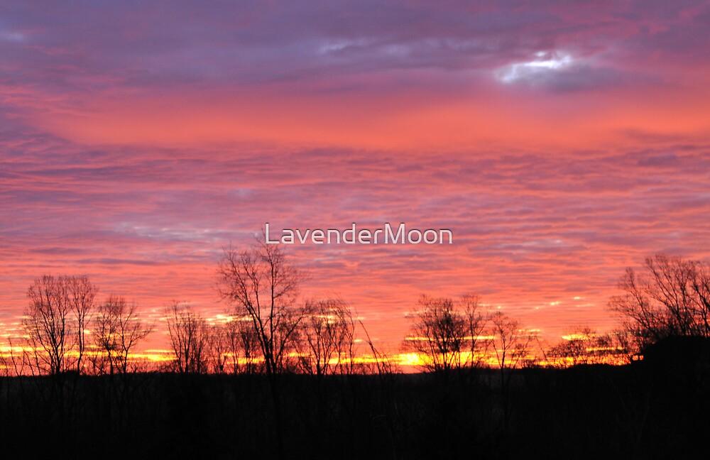 Spun Sugar Sunrise by LavenderMoon