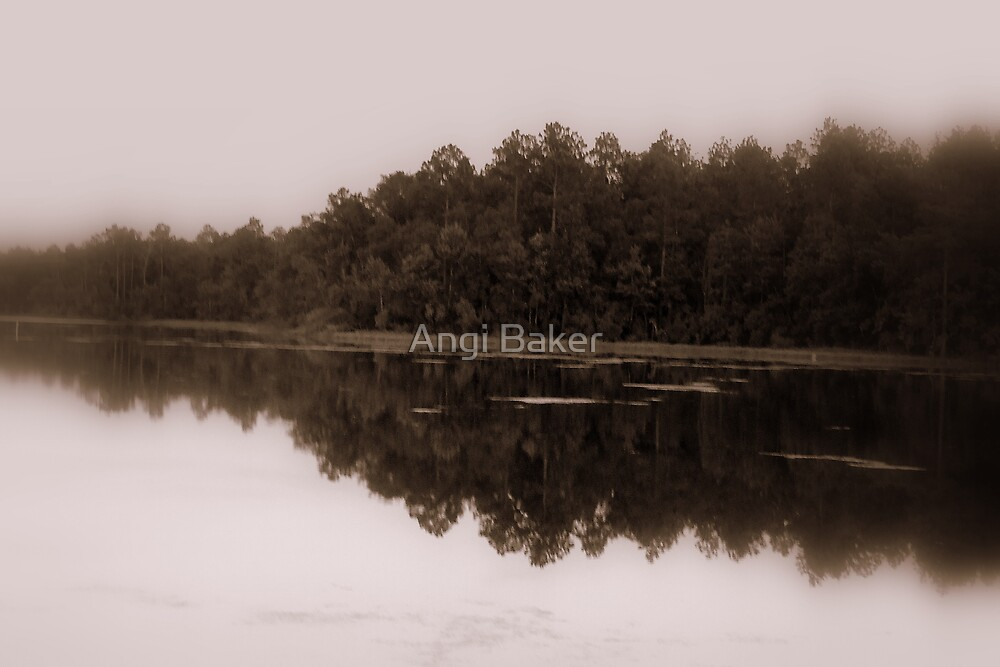 Reflections by Angi Baker
