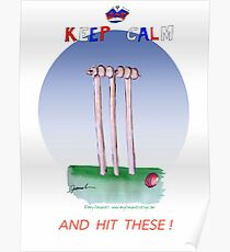 English Cricket Keep Calm and hit these Poster