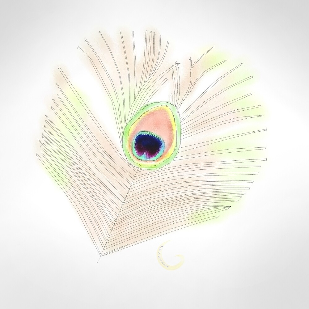 Peacock feather sketch by thebigG2005