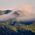 Misty Mountain Maui Hawaii by Elizabeth  Lilja