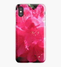 Deep Pink Rhododendron iPhone Case/Skin