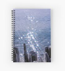Ice and Sparkle Spiral Notebook