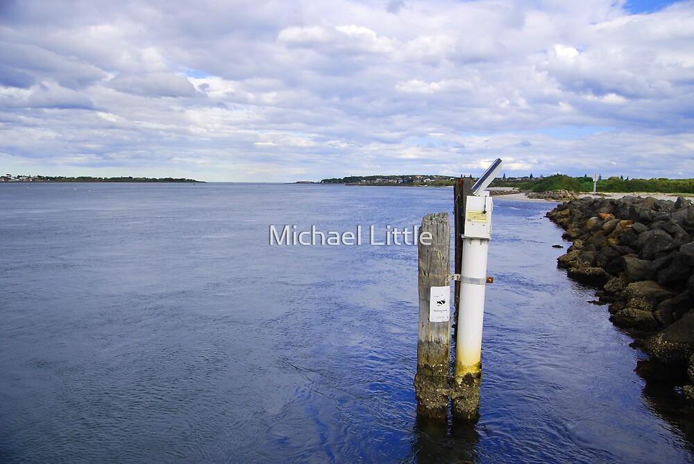 Swansea by Michael Little