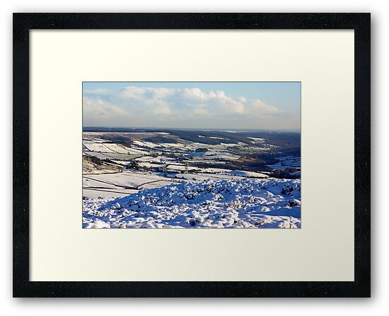Views of the North Yorks Moors National Park #6 by Trevor Kersley