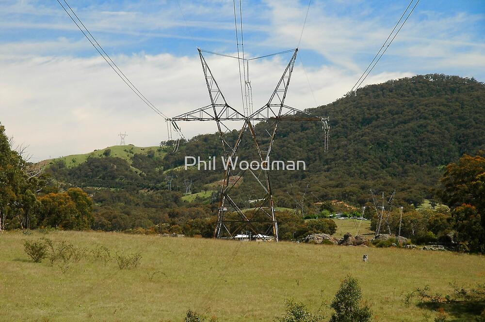 Rusty Pylons by Phil Woodman