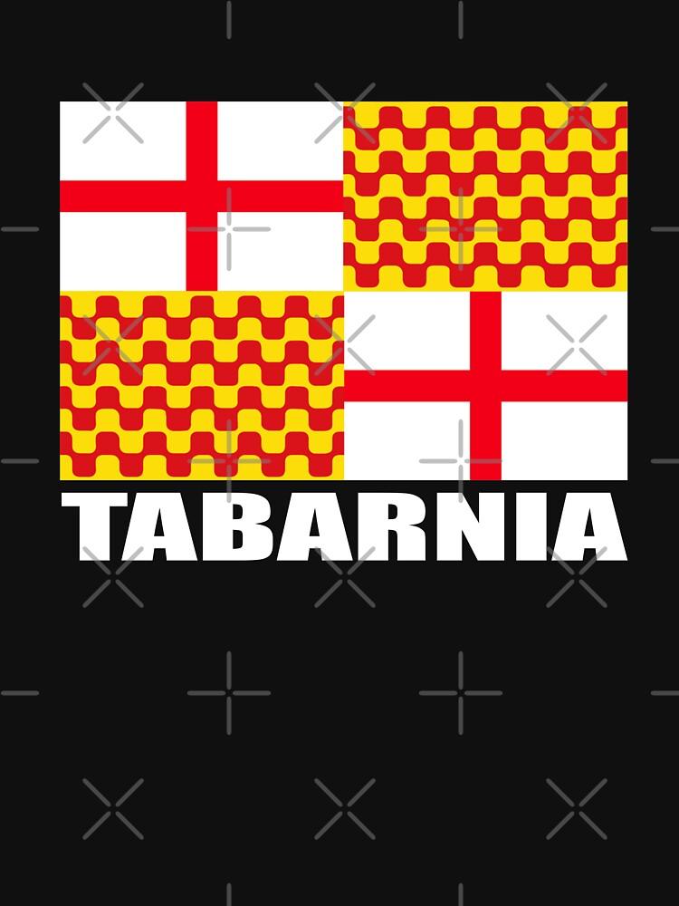 TABARNIA FLAG #tabarnia #TabarniaLliure de vasebrothers