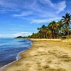 Fiji, South Pacific islands by virginia50