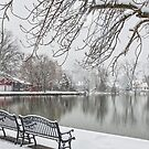 Snowy Benches by the Lake by andykazie