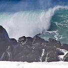 Pacific Ocean Wave by Elizabeth  Lilja