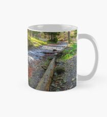 river shore in national park with late in autumn Mug