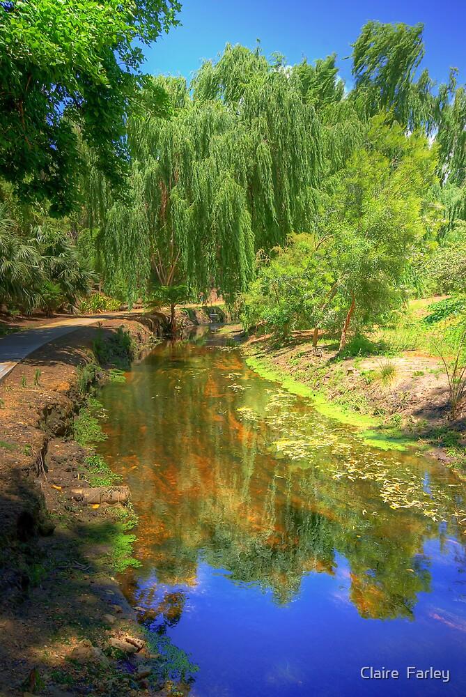 Severin Walk, Abernethy Rd by Claire  Farley