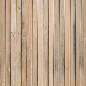 Texture of pine wood by homydesign
