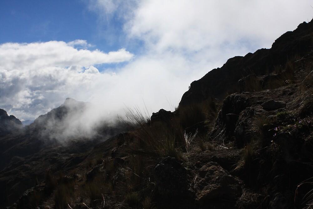 mist, lares valley, peru by nickaldridge