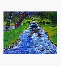 Stream in the garden of Blarney Castle, County Cork, Irish Republic Photographic Print