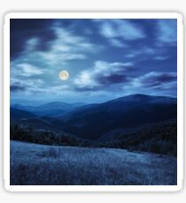 meadow in high mountains at night Sticker