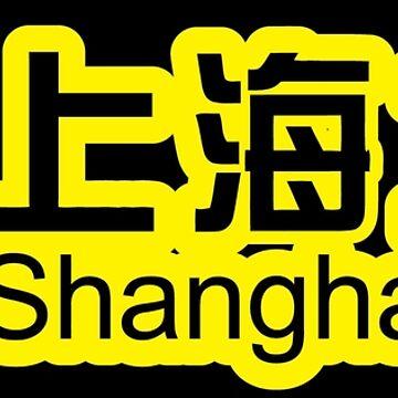 Shanghai Metro by richdelux