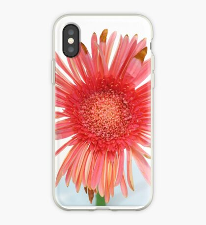 Quite Nice But Not Quite Perfect Daisy iPhone Case