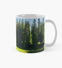 bower on the lake in forest Mug