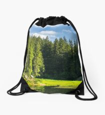 bower on the lake in forest Drawstring Bag