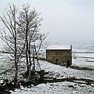Cold comfort barn by clickinhistory