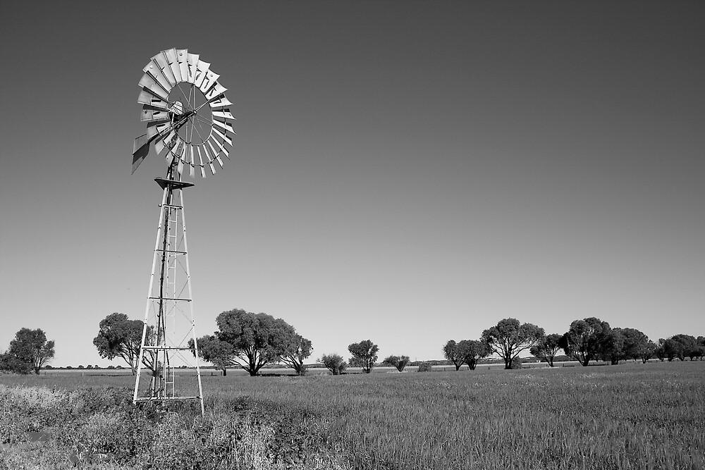 Windmill by ShaunRose