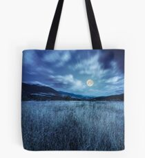 meadow with high grass in mountains at night Tote Bag