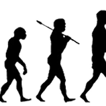 Baseball Evolution by evolucion