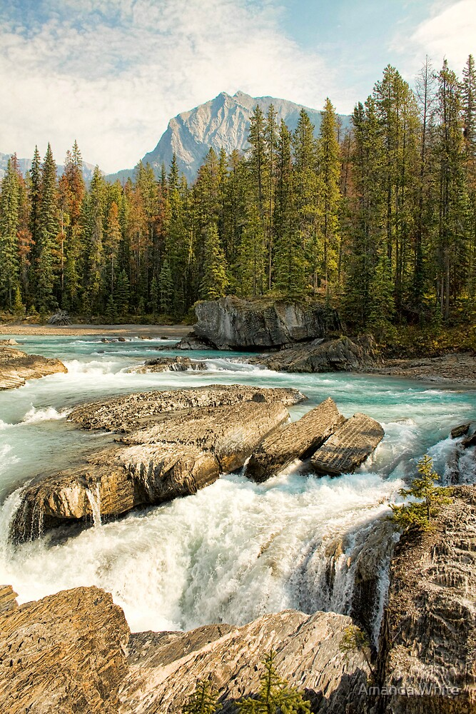 Natural Bridge, Kicking Horse River by Amanda White