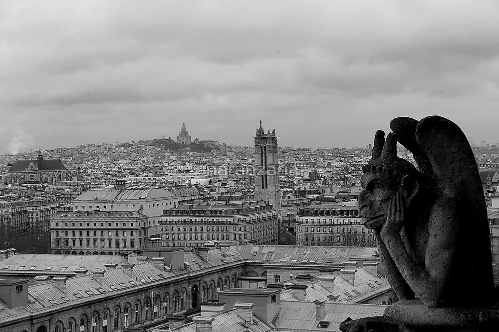 Another view from Notre Dame. by naranzaria