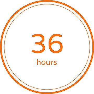 36 Hours Orange Black Mirror Hang the DJ by lezcopines