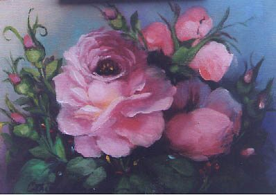 pink Rose by Cathy Amendola