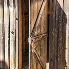 Old Barn Door by Deborah Downes