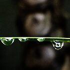 Rainy days by iamelmana