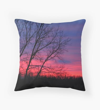 Dark Days of December... Throw Pillow