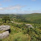 View from Combestone Tor by kalaryder