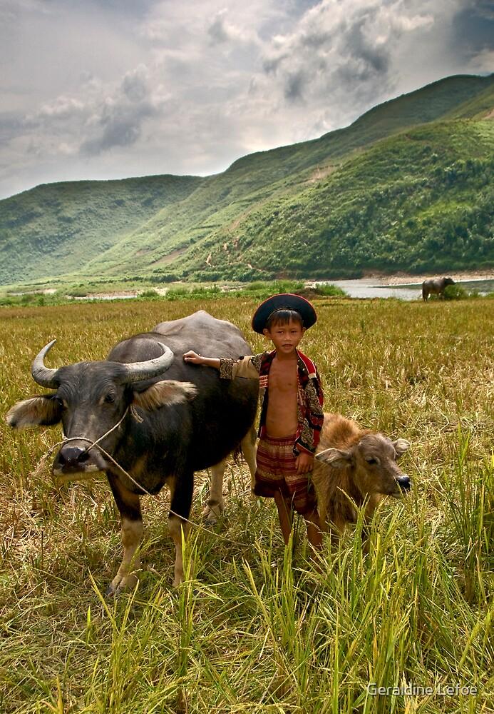 Buffalo boy by Geraldine Lefoe