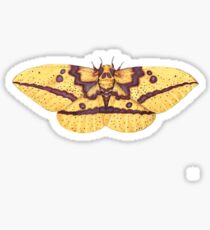 Imperial Moth (Eacles imperialis). Sticker