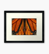 Symmetry in Nature Framed Print
