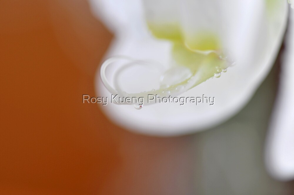 Inner Beauty by Rosy Kueng Photography