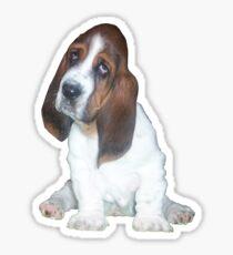 Barney the Bassett Hound  Sticker