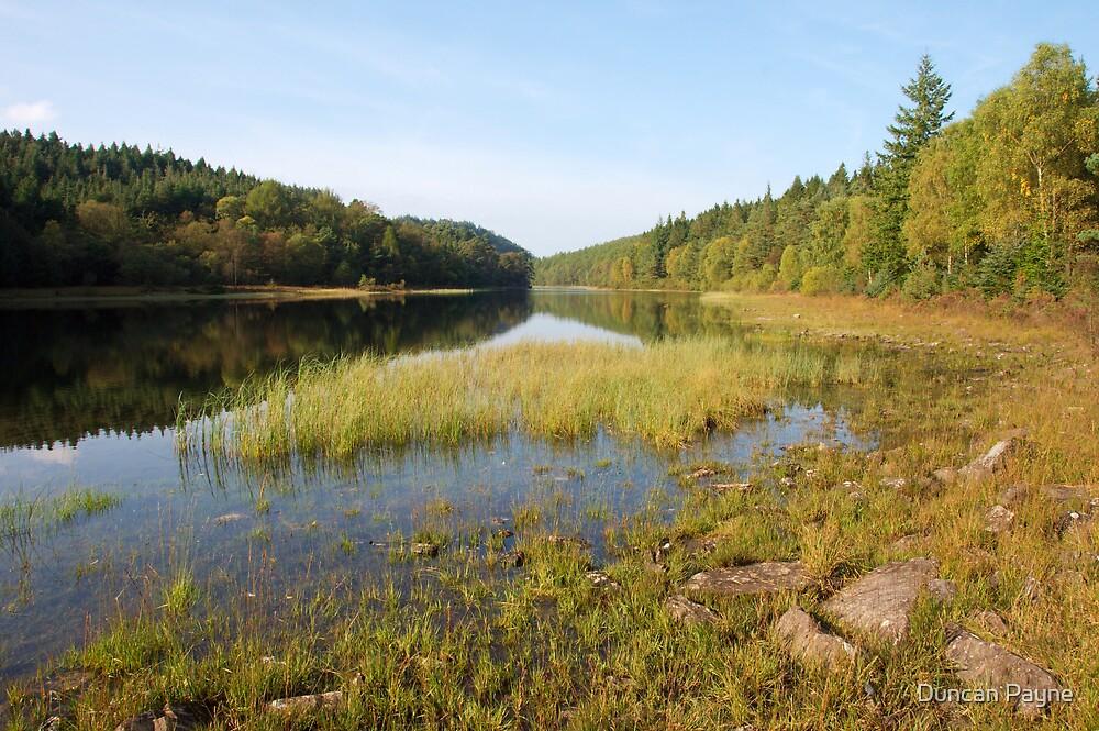 Still Lake by Duncan Payne